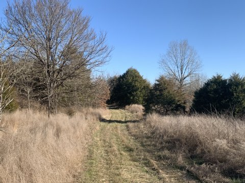 Hunting land for sale in western ky