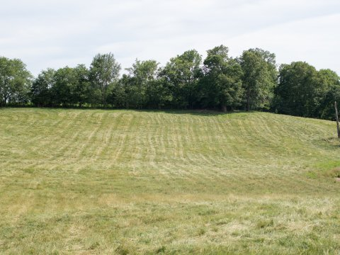 land for sale in bowling green ky