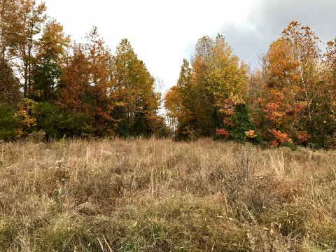 land with owner financing in ky