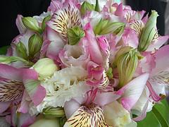 klamath falls flowers