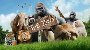 real estate syndication zoo