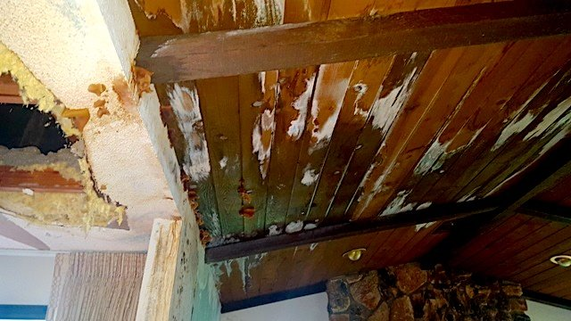 Leaky roofs can cause havoc if you don't act quickly.