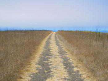 We Buy Vacant Land in Dracut Massachusetts