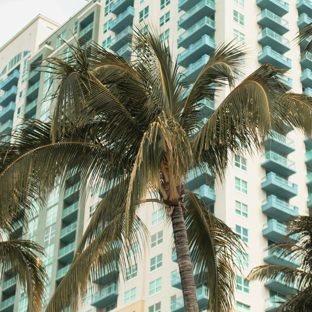 Miami Gardens Florida we offer cash for house
