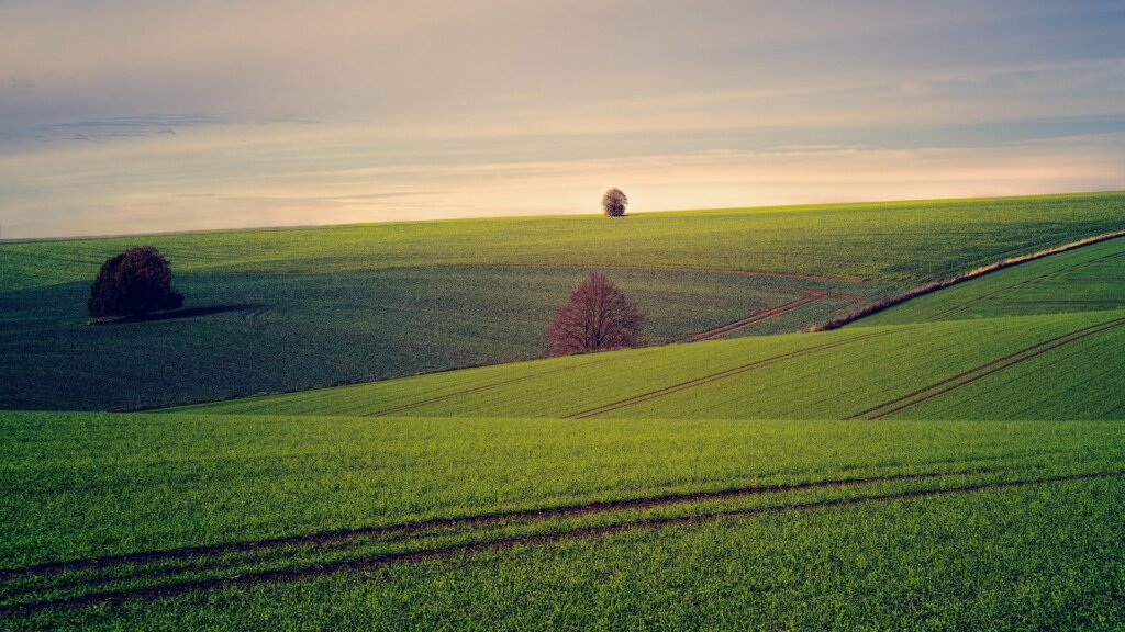 Learning how to sell land in North Carolina - Sell Charlotte Home Fast LLC