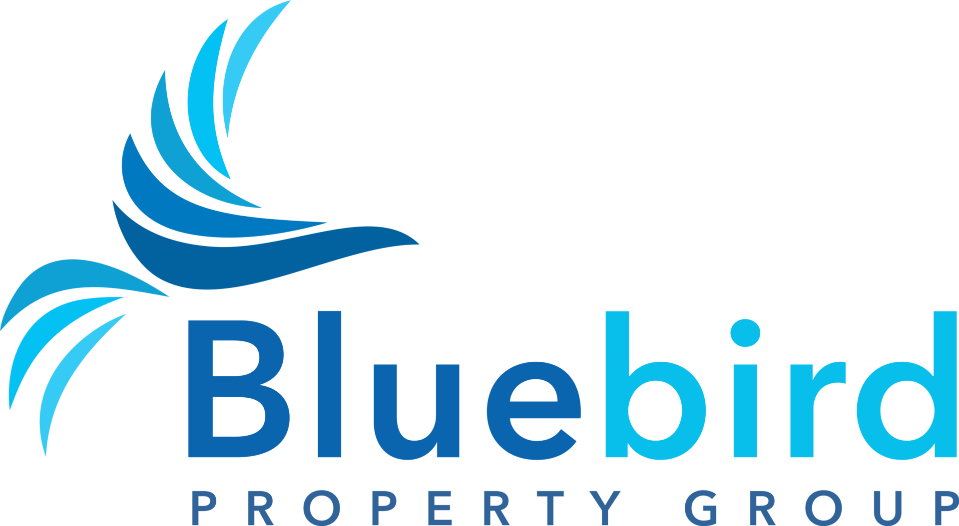 Bluebird Property Group logo