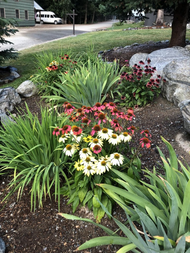 New Home Buyers Love Elegent and Low-Maintenance Landscaping.