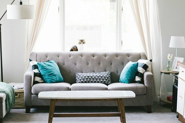 gray couch with colorful blue pillows and white coffee table