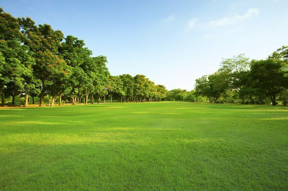 buy sell land in southeast texas