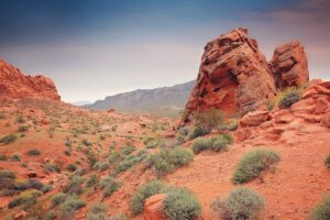 Difference of selling land and house in Tucson AZ