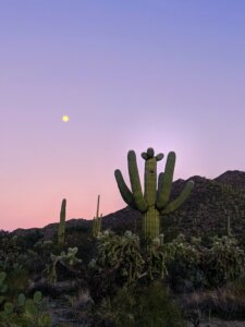 Tips for selling a vacant land in Tucson