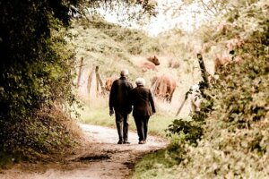 Importance of financial stability to enjoy retirement years