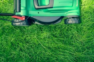 maintain yard and landscaping to keep tenants happy