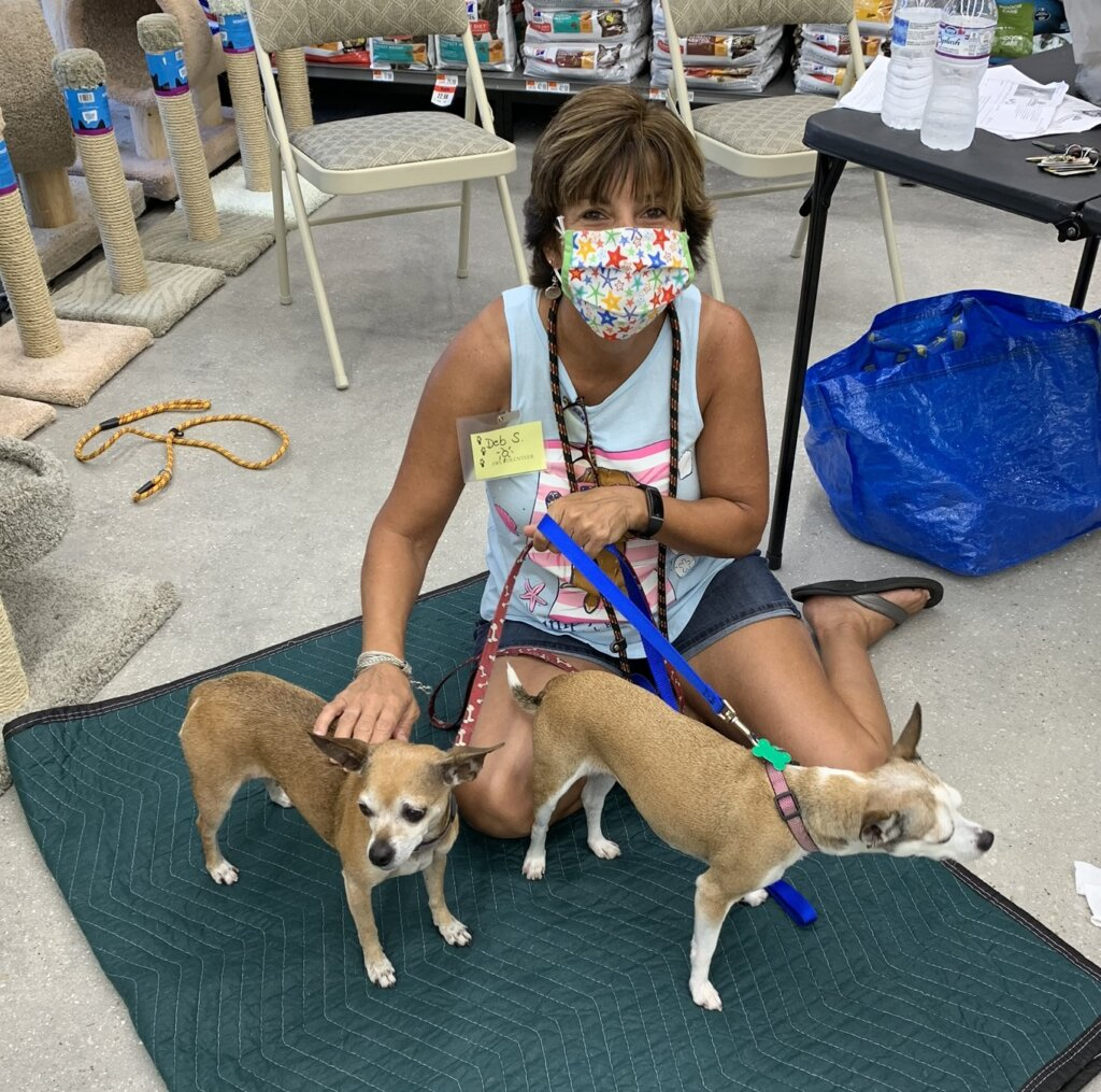 Adoption event at Pet Supplies Plus in Port Charlotte