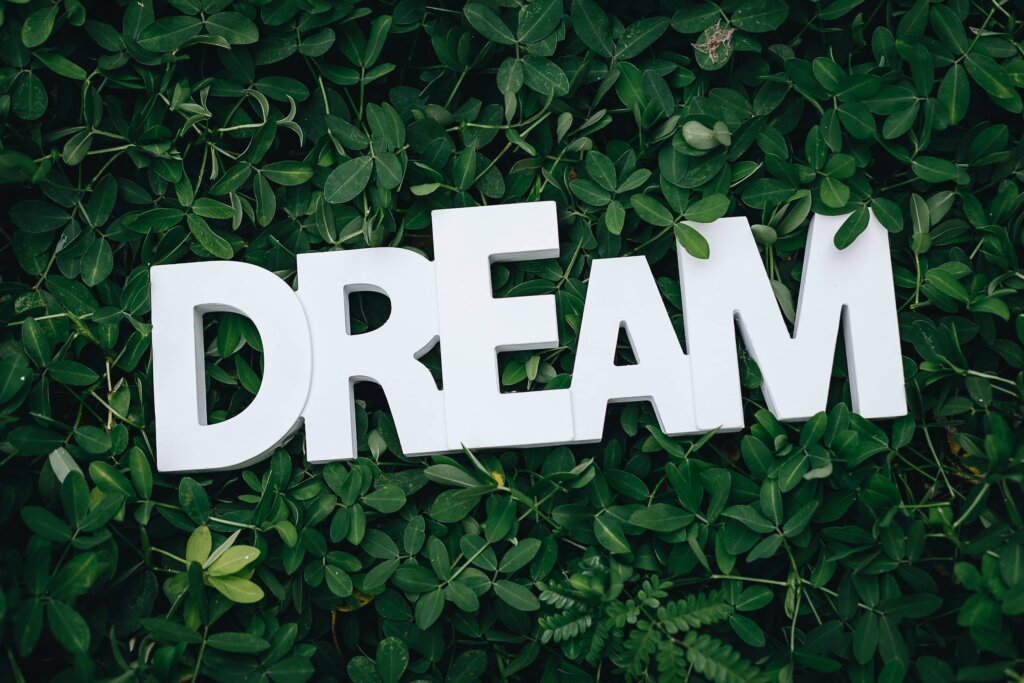 the word dream against a bunch of leave for decoration purposes only