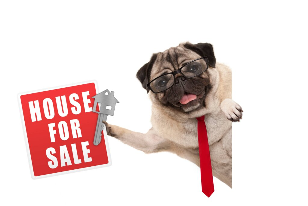 listing-fsbo-to-sell-your-house-in-new-jersey-dog-with-sign