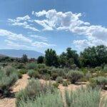 Land in Rio Rancho