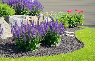 Landscaping in your Walled Lake MI