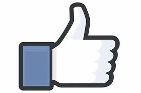 www.facebook.com/RobertOrfinoREI