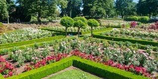 Peninsula Park Rose Garden Review - Living Room Realty