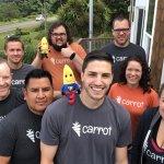 carrot-team