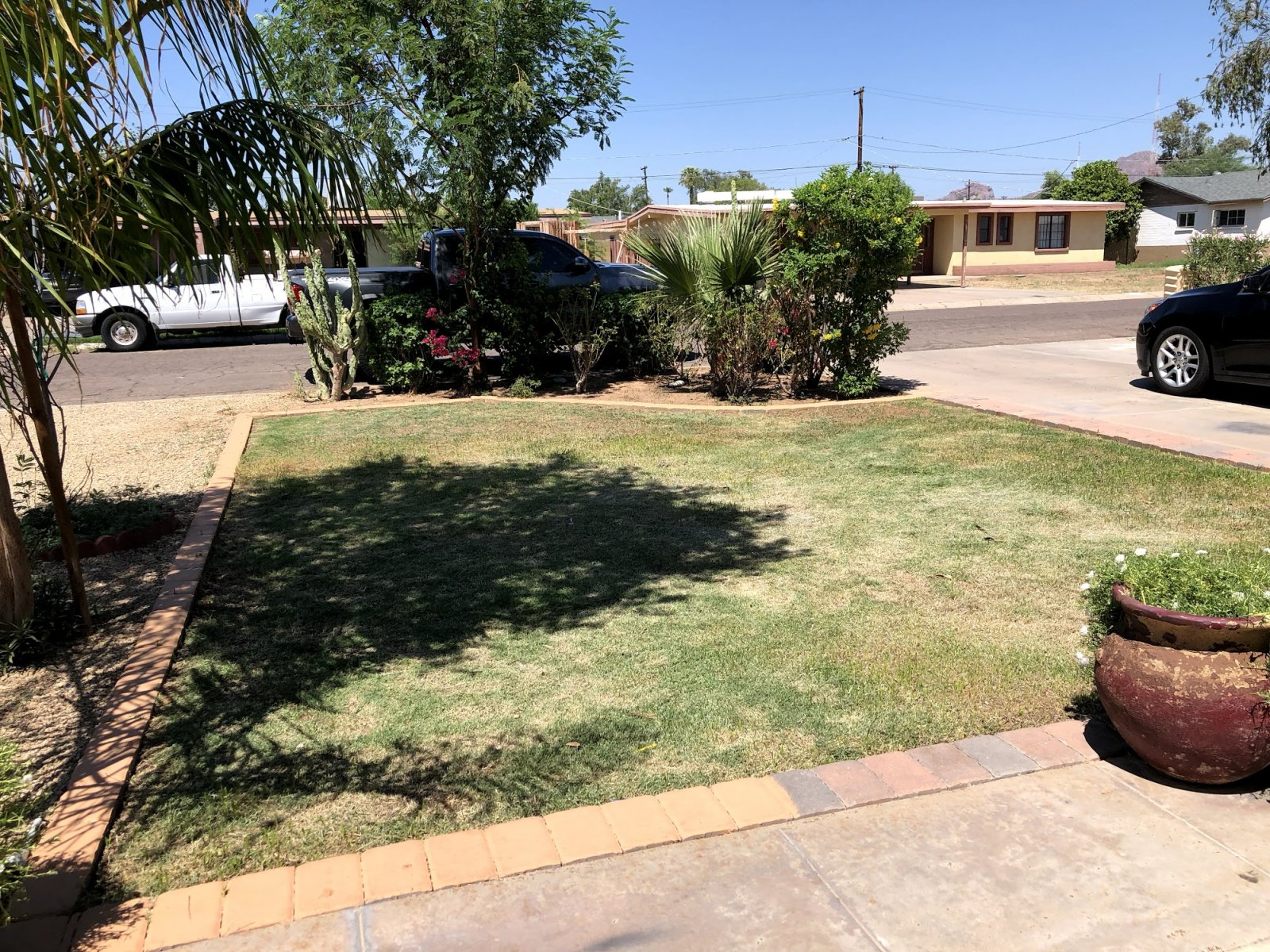 Phoenix Discounted Property - 3319 E Monte Vista Rd.
