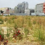 buying a vacant lot