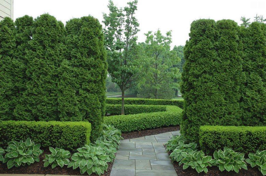 botantical green