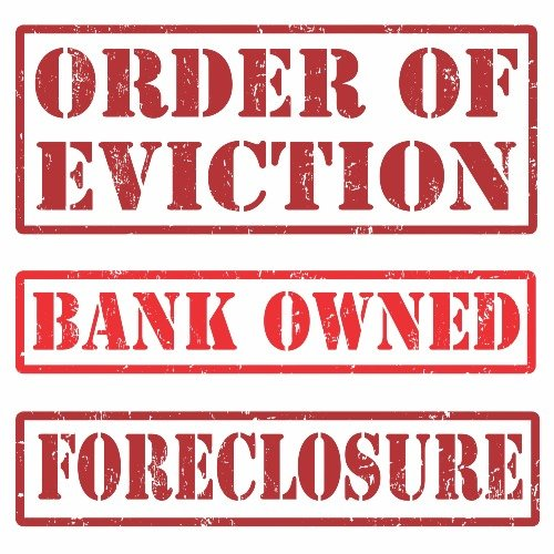 after foreclosure auction in florida