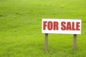 buying_land1