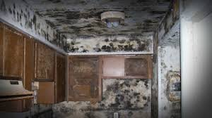 selling a house with mold in colorado