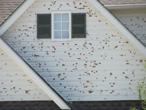 sell a house with hail damage colorado