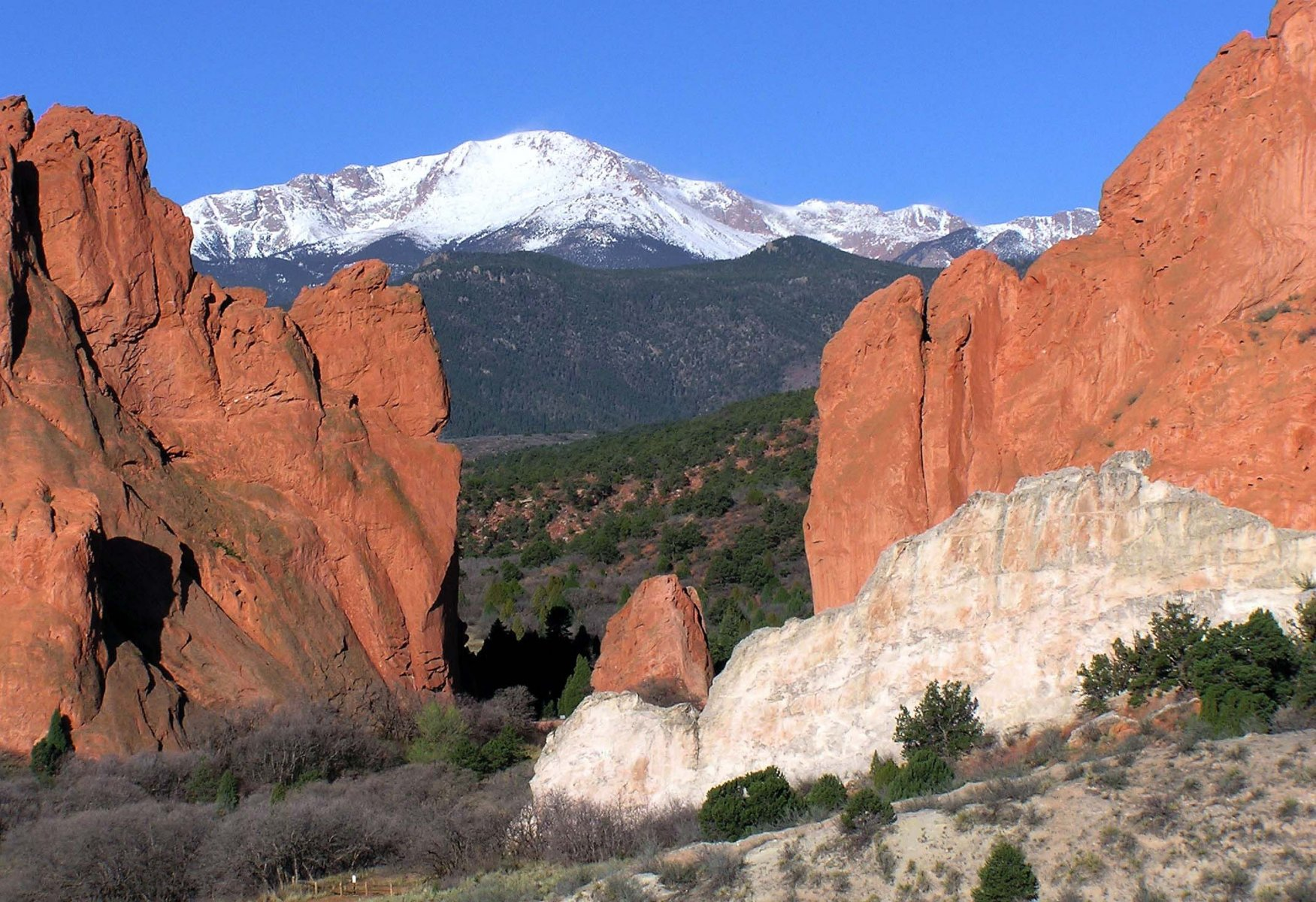 we are buying colorado springs houses professionally cash
