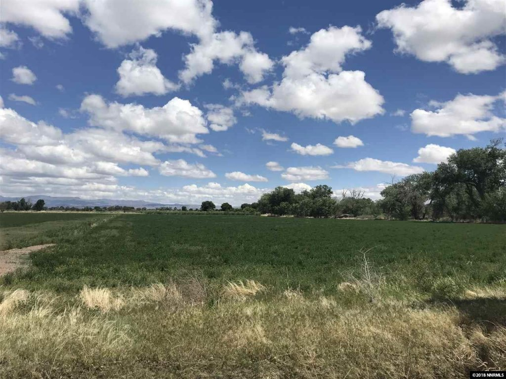 5 Ways To Use Your Profits After Selling Your Land in Colorado Springs !