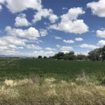 How To Really Profit From Buying And Selling Land In Colorado Springs