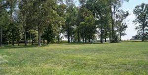 We Buy Land www.webuyhousescascadeatlanta.com